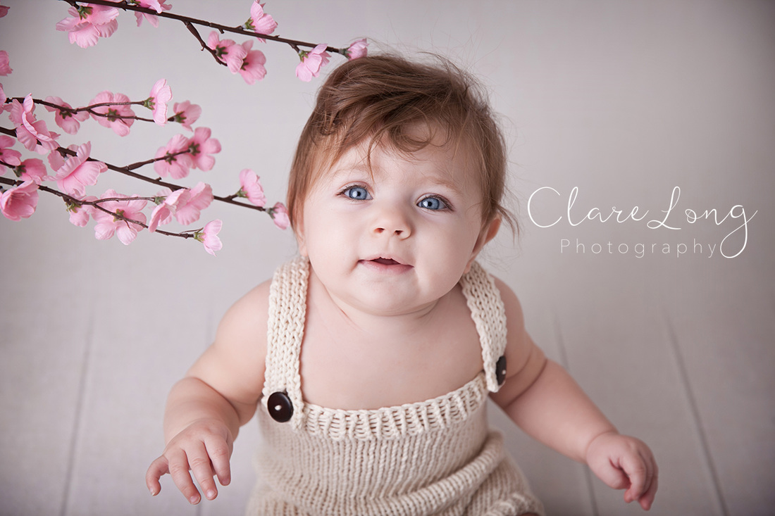 Clare Long Photography Bexley Kent photographer Sitter session spring cherry blossom