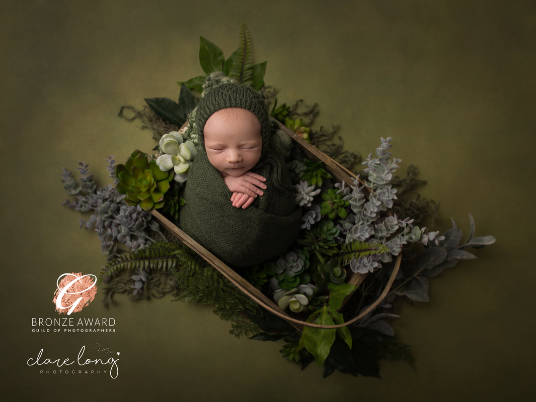 Succulents and baby boy sleeping Newborn photography Kent
